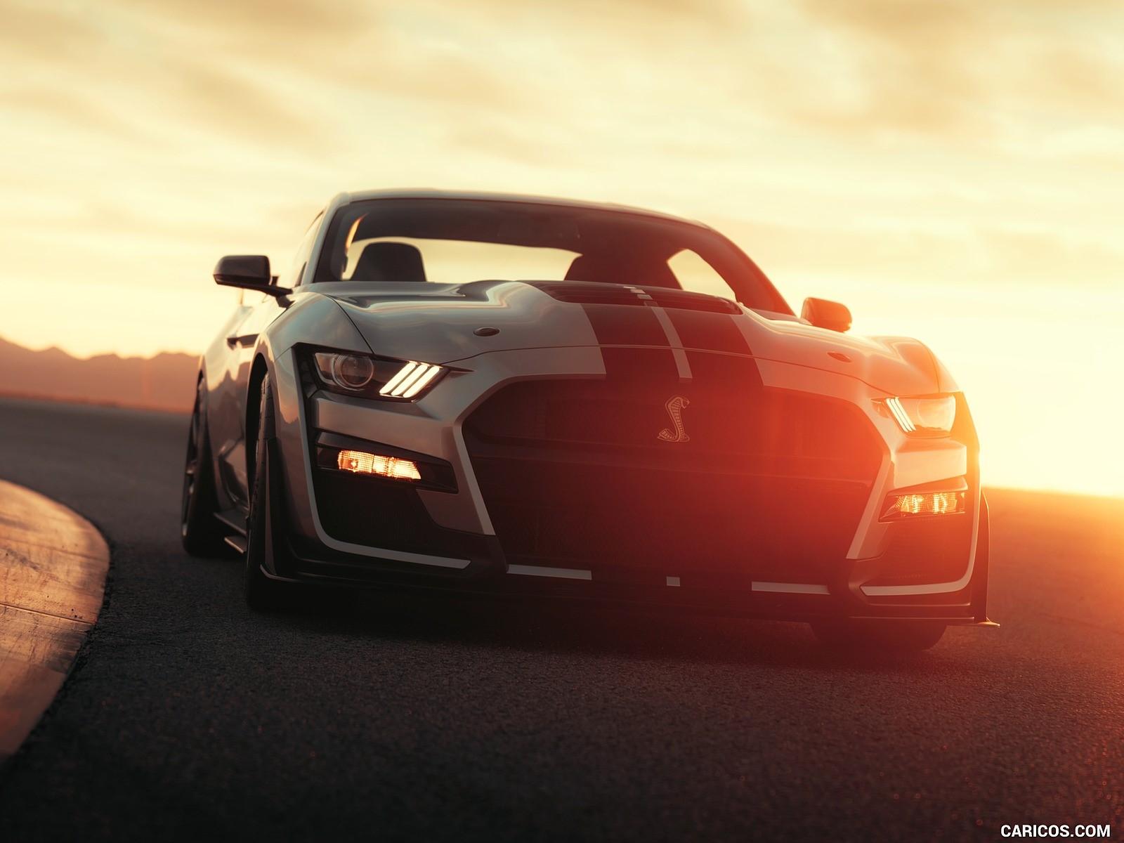 Ford Mustang Shelby fotoları