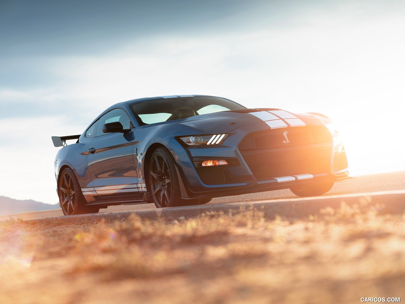 Ford Mustang Shelby hd resmi 1