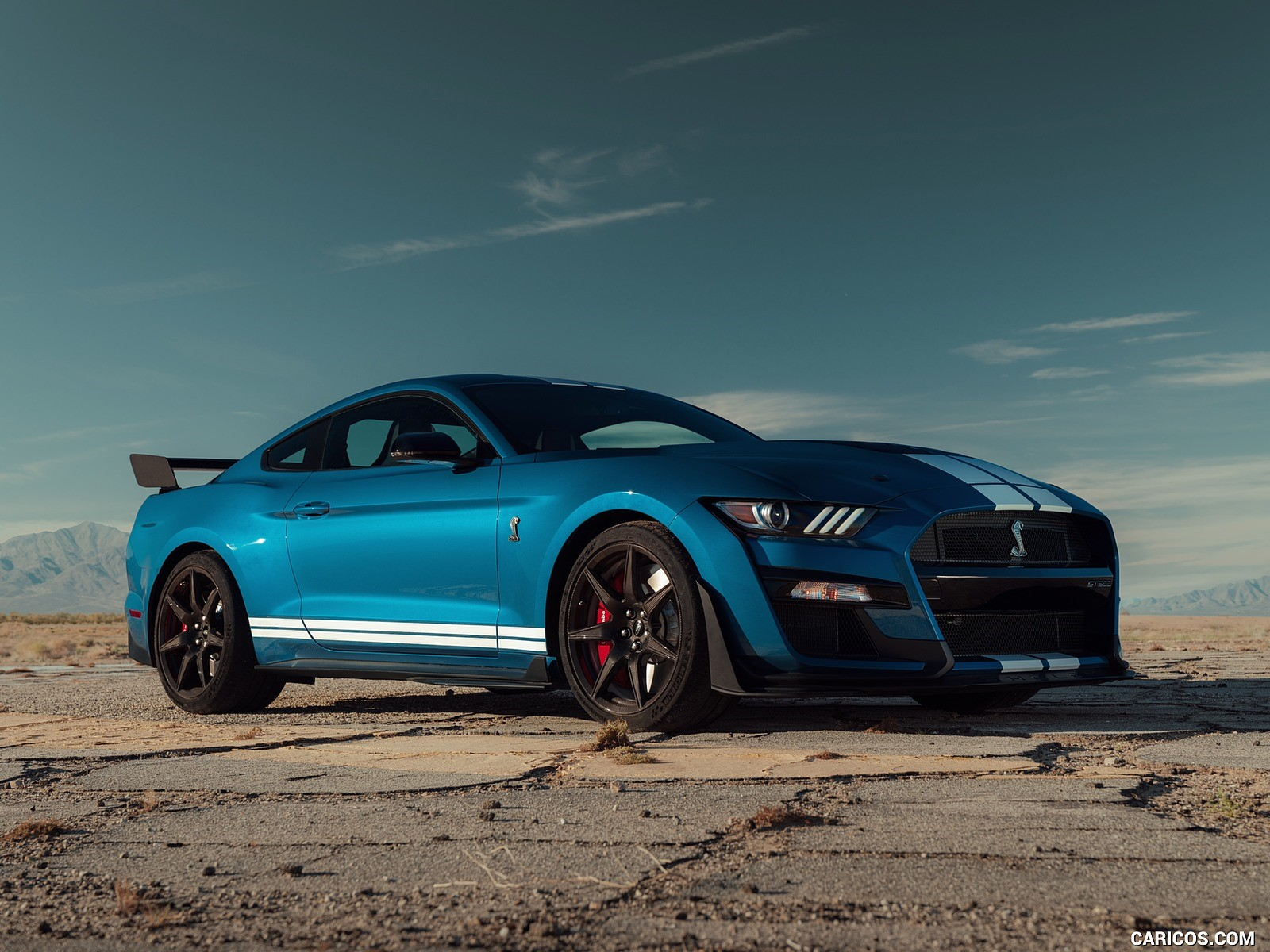 Ford Mustang Shelby wallpapers 1