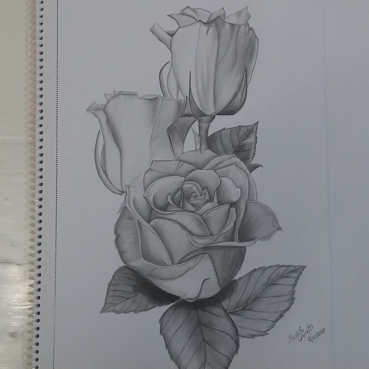 karakalem çizimleri 1