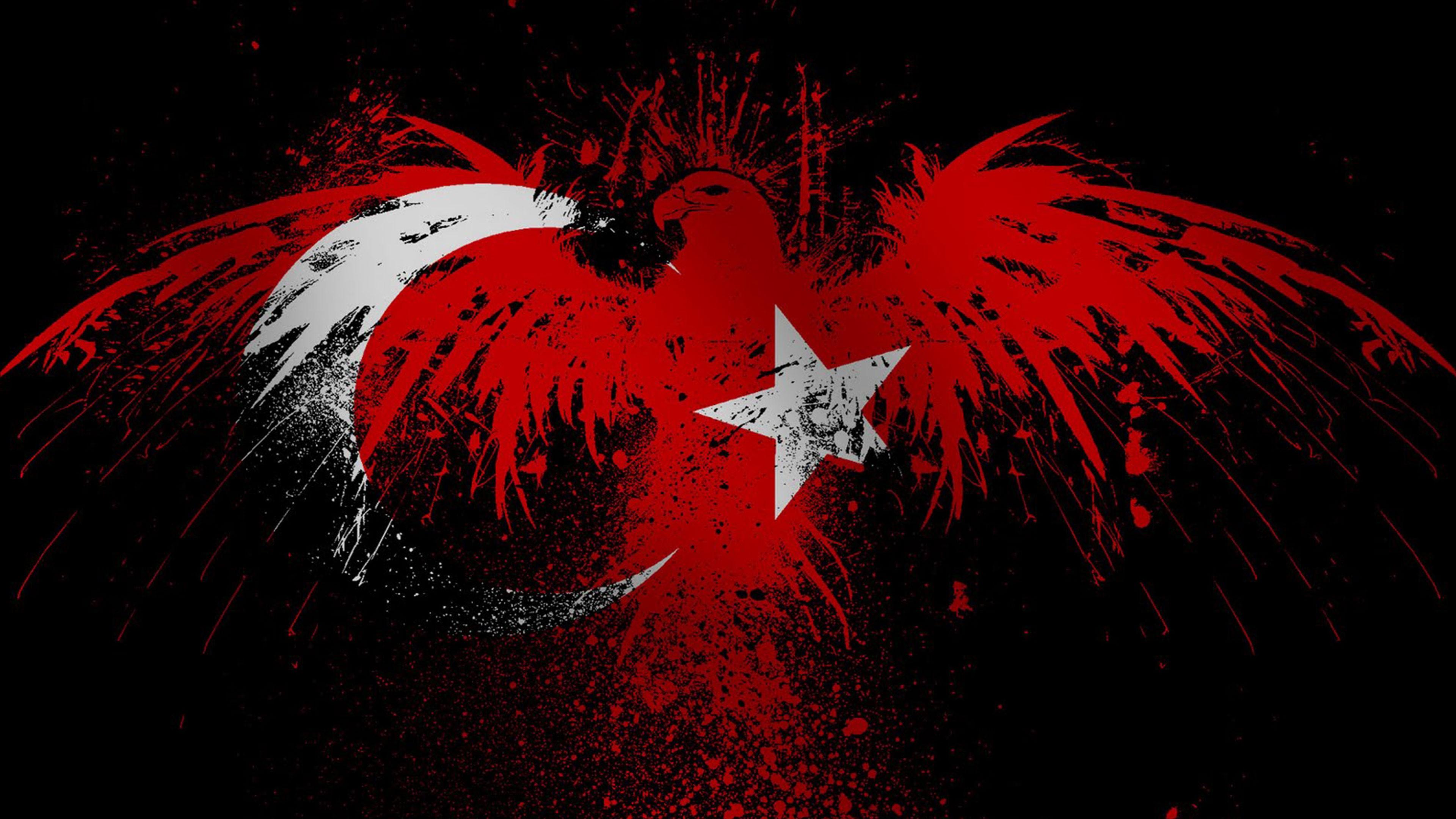 Türkiye Flag