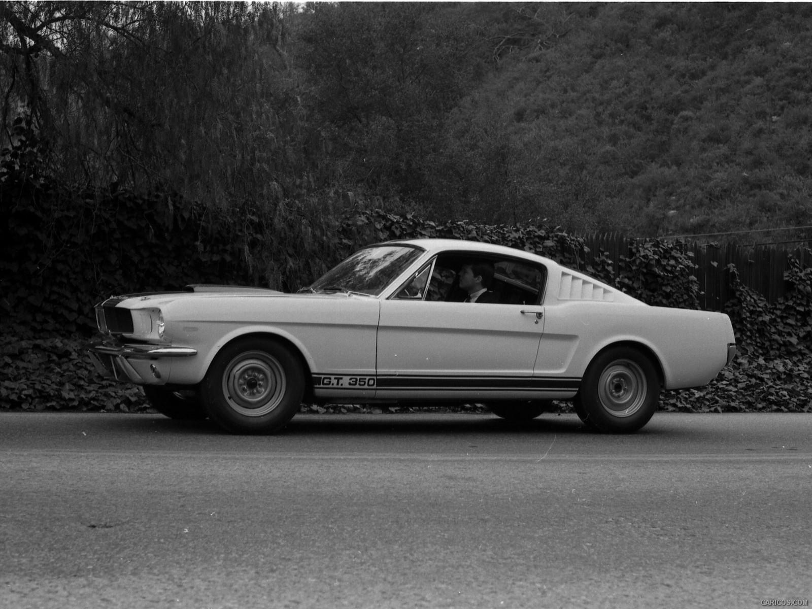 Ford Mustang Shelby GT350 hd duvarkağıdı