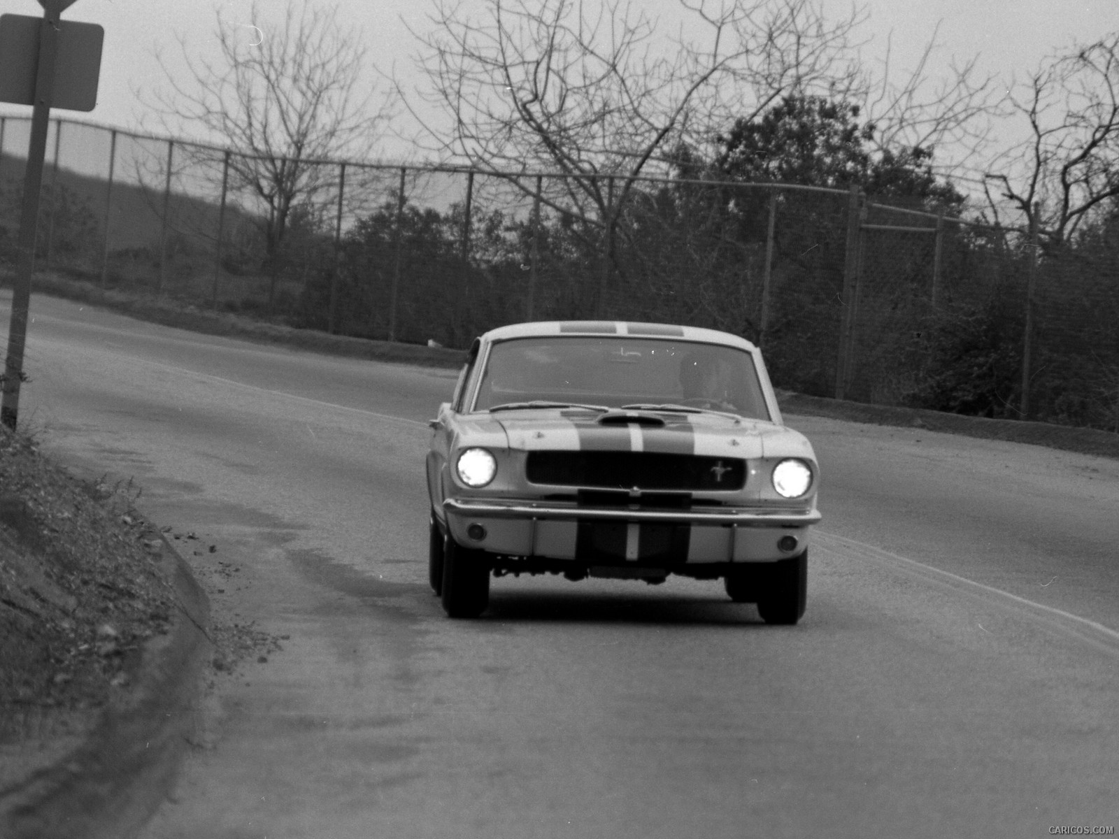 Ford Mustang Shelby GT350 resim