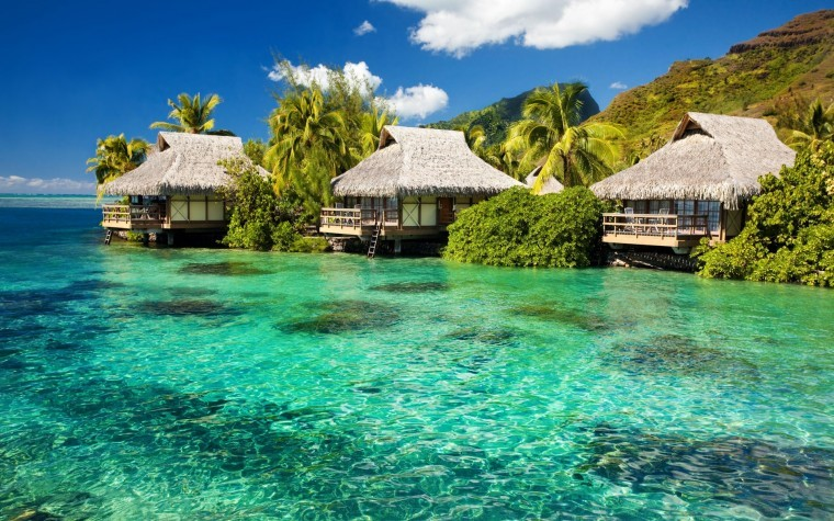 Tropikal Ada 2k duvarkağıdı