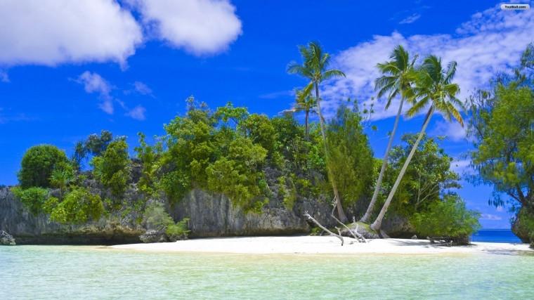 Tropikal Ada duvarkağıtları