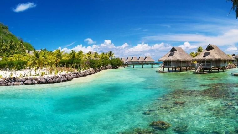 Tropikal Ada görseller