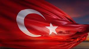 Dalgalı Bayrak Resmi
