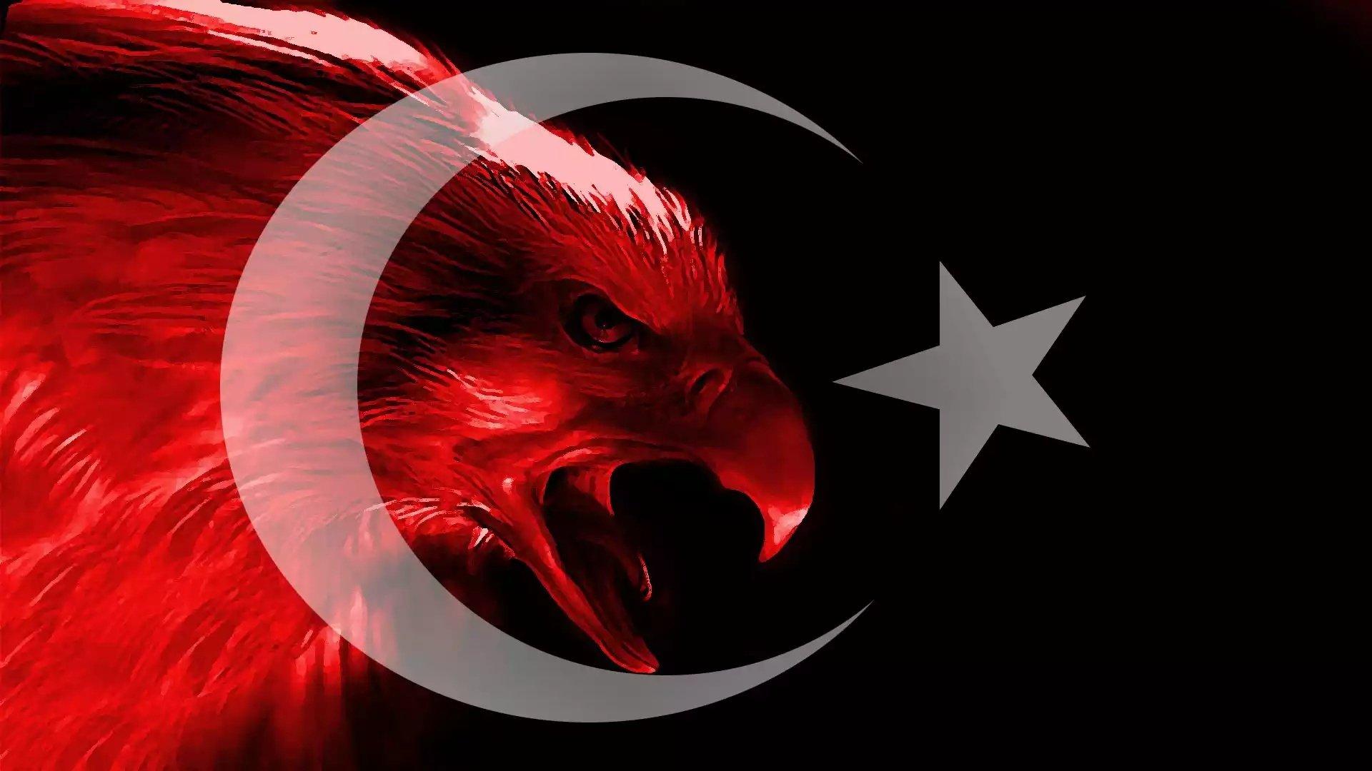 Türk Bayrağı Kartal Kabartmalı
